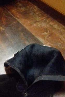 Demisezoniniai batai